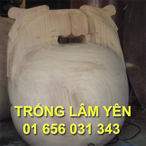 0001_mo_tung_kinh_trong_lam_yen