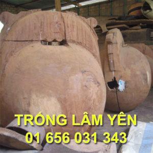 0004_mo_tung_kinh_trong_lam_yen