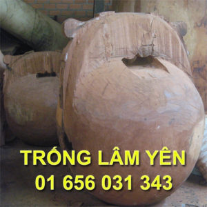 0005_mo_tung_kinh_trong_lam_yen