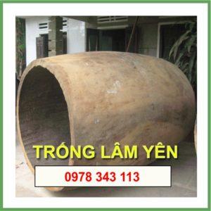 Trống Lâm Yên 004